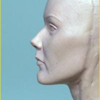 Wax Portrait