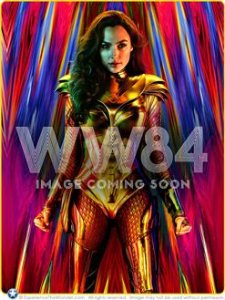 3742cf4c Wonder Woman Statues   ExperienceTheWonder.com